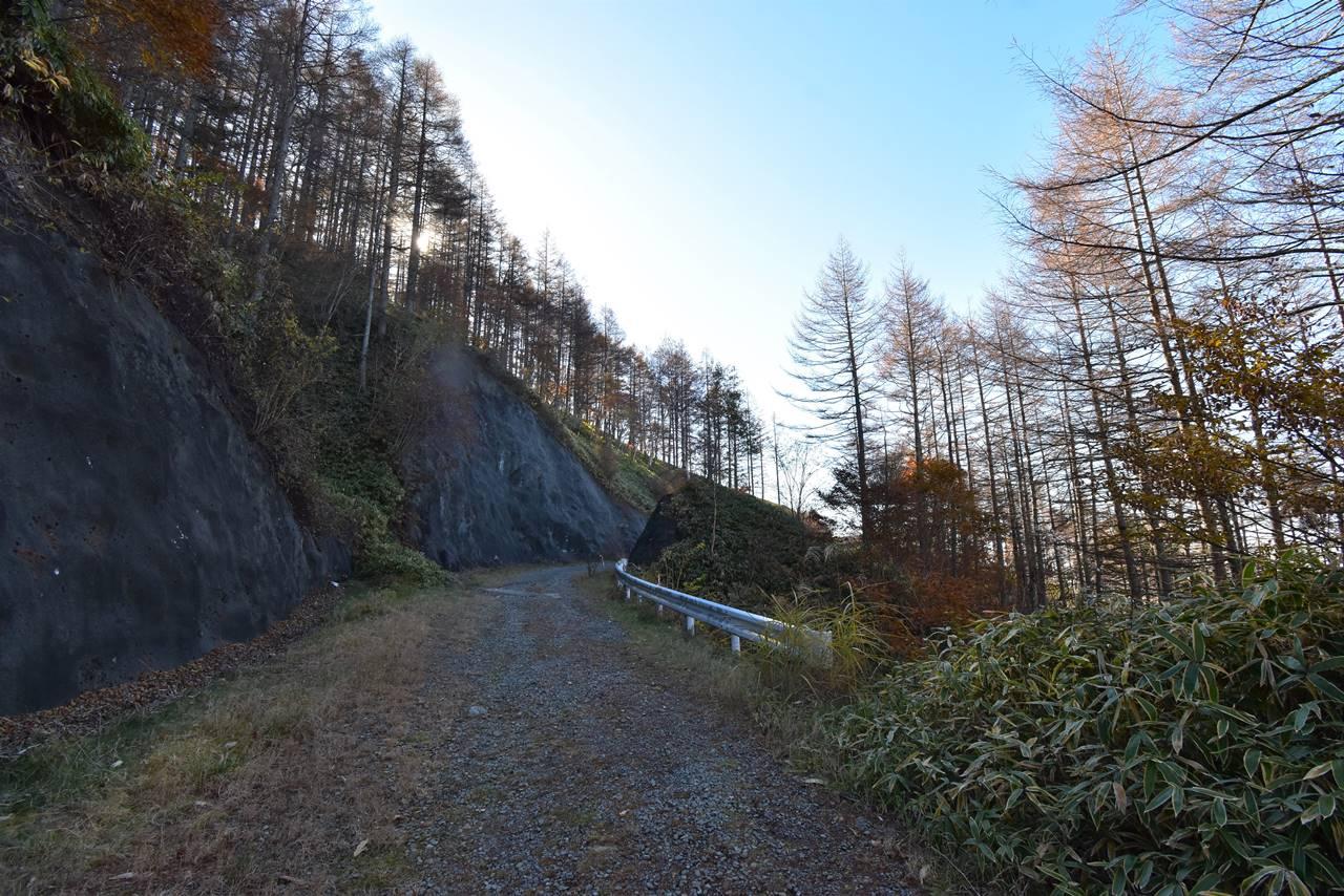 小屋平から石丸峠途中の林道