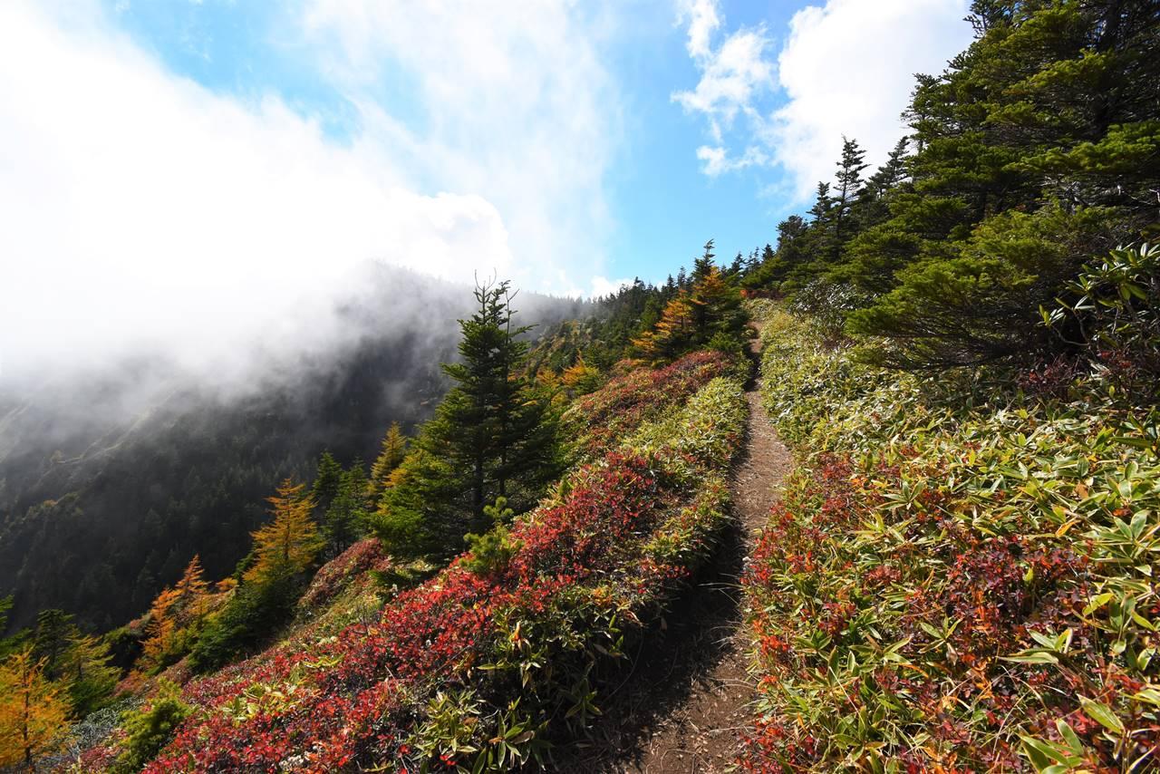 蛇骨岳から黒斑山へ 外輪山の稜線