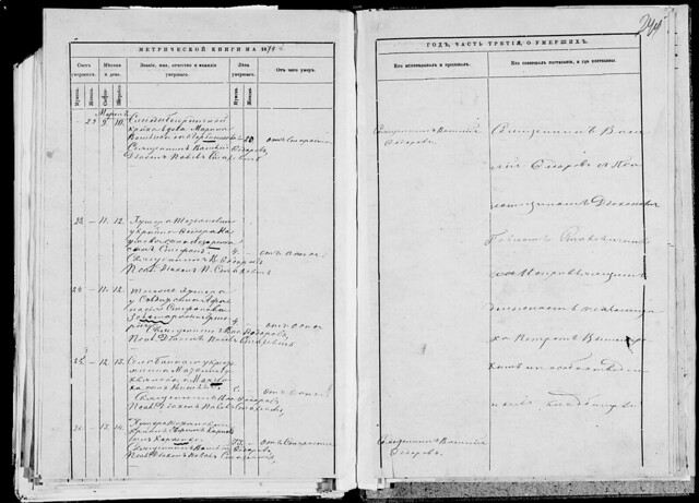 1874г. Метрическая книга Скорбященской церкви с.Богородичное