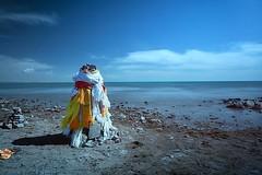 青海湖北岸 #iphonephotography #ig_today #captchina #mychinagram #Magicpic #McgPro #ig_capture #iphonephotography  #worldingram #wu_china #captchina