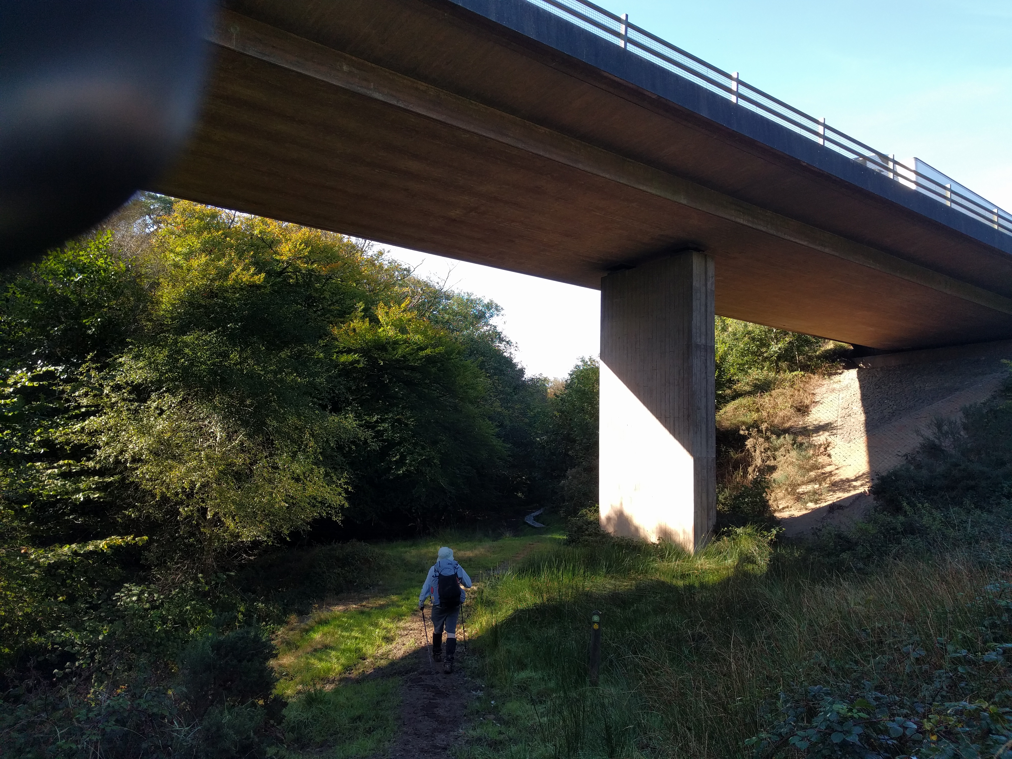 Under the A361 #sh #twomoorsway