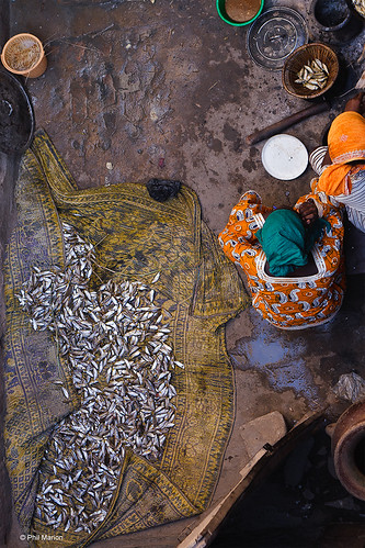Bozo women sorting the day's catch - Djenne, Mali | by Phil Marion