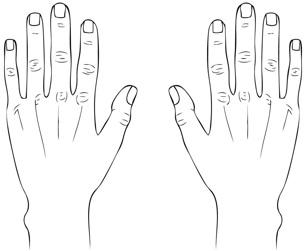 hands line drawing 2 gabriella bocchetti flickr