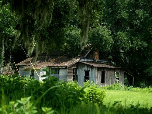 Florida Abandoned Property