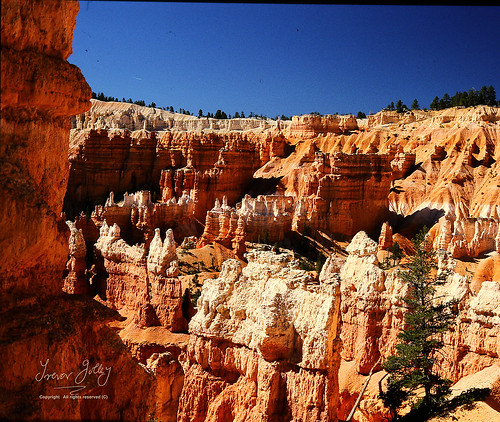 Bryce Canyon late afternoon | by Trevor Jolley