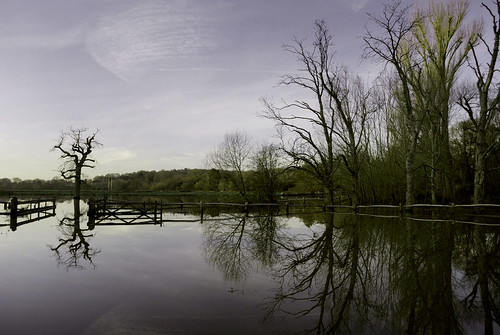 Flooded fields River Arun January | by Fittleworth ~ UK