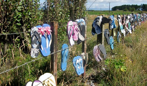 Jandals on barb wire fence - compulsory footwear for Kiwis in summer | by Photo Trunk