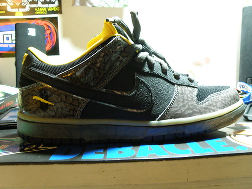 Nike Sb Dunk Golf Shoes