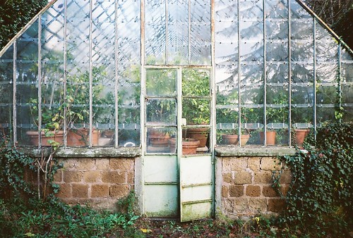 Greenhouse | by Matt W Cox