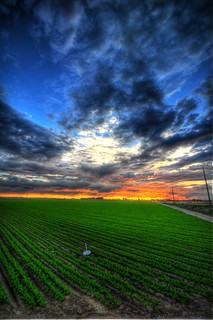 HDR - Field Sunset 2 | by myke321