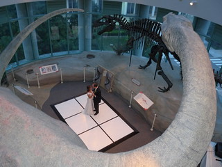 AcroDome Third Floor | by North Carolina Museum of Natural Sciences