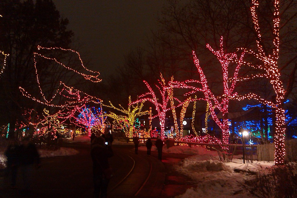 christmas lights display at the indianapolis zoo by edeckers