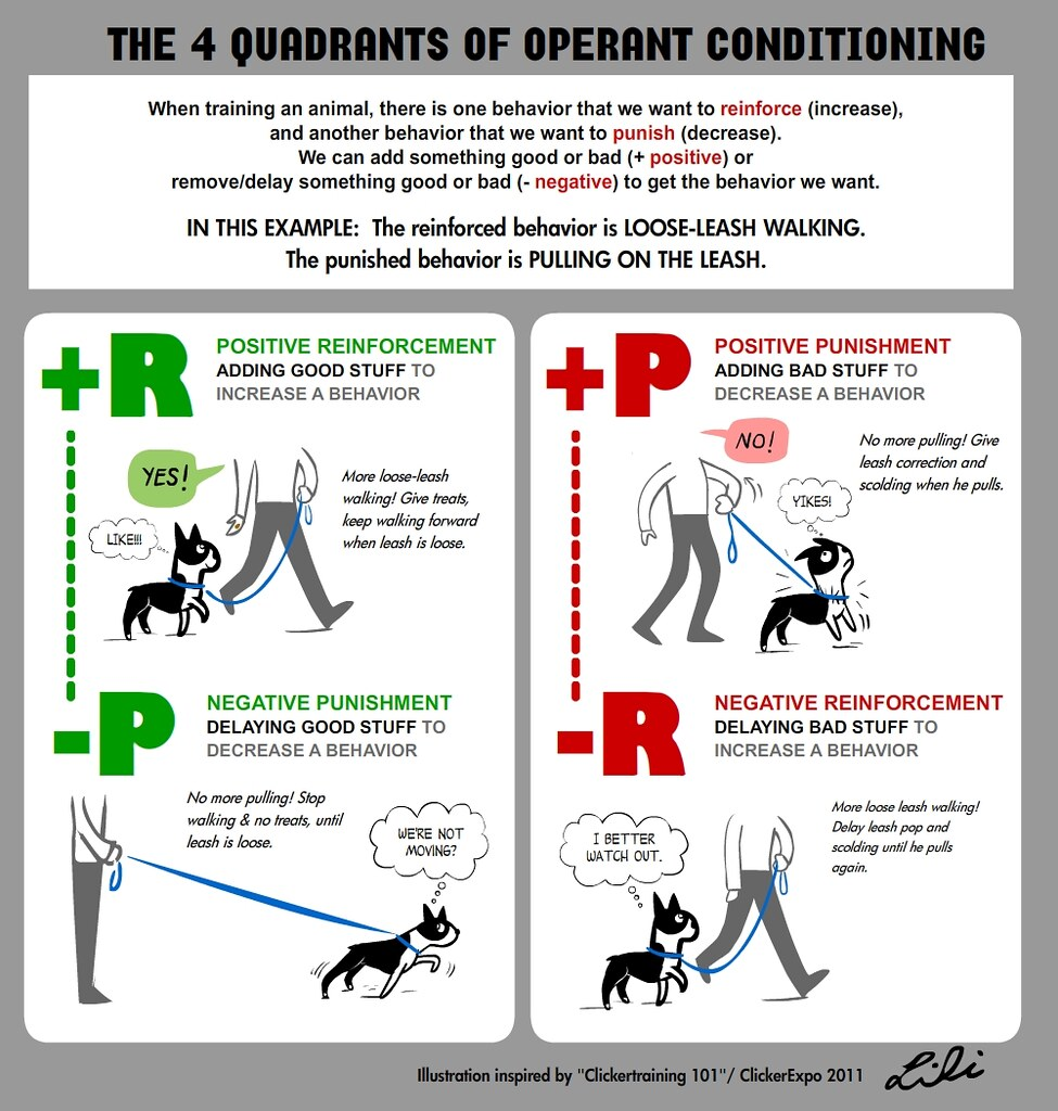 The Four Quadrants Of Operant Conditioning My Clickerexpo Flickr