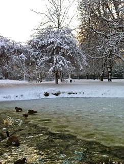 Frozen pond in Pearson Park | by ramtops