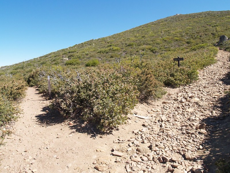 The PCT heads north on the left, and the Garnet Peak Trail heads uphill on the right