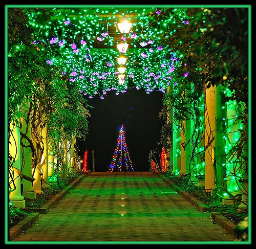 Daniel stowe botanical garden this is in belmont nc - Daniel stowe botanical garden christmas ...