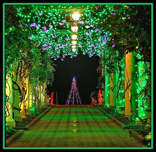 Daniel Stowe Botanical Garden This Is In Belmont Nc