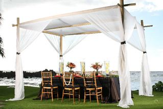 ... bamboo canopy tropical table | by First Class Weddings & bamboo canopy tropical table | At www.afirstclasswedding.comu2026 | Flickr