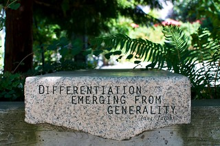 "NCC - ""Differentiation Emerging From Generality"" Jane Jacobs 