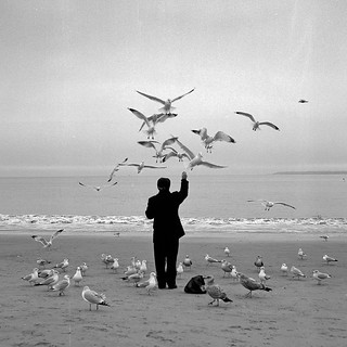 coney island bird man | by Barry Yanowitz