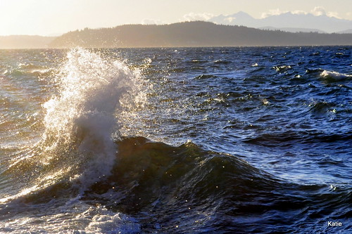 Waves crashing on the Puget Sound | by mikeyskatie