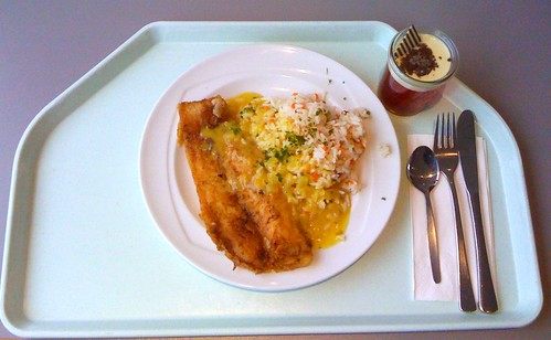 Pangasiusfilet in Curry-Kokossauce / Pangasius filet with curry coco sauce | by JaBB