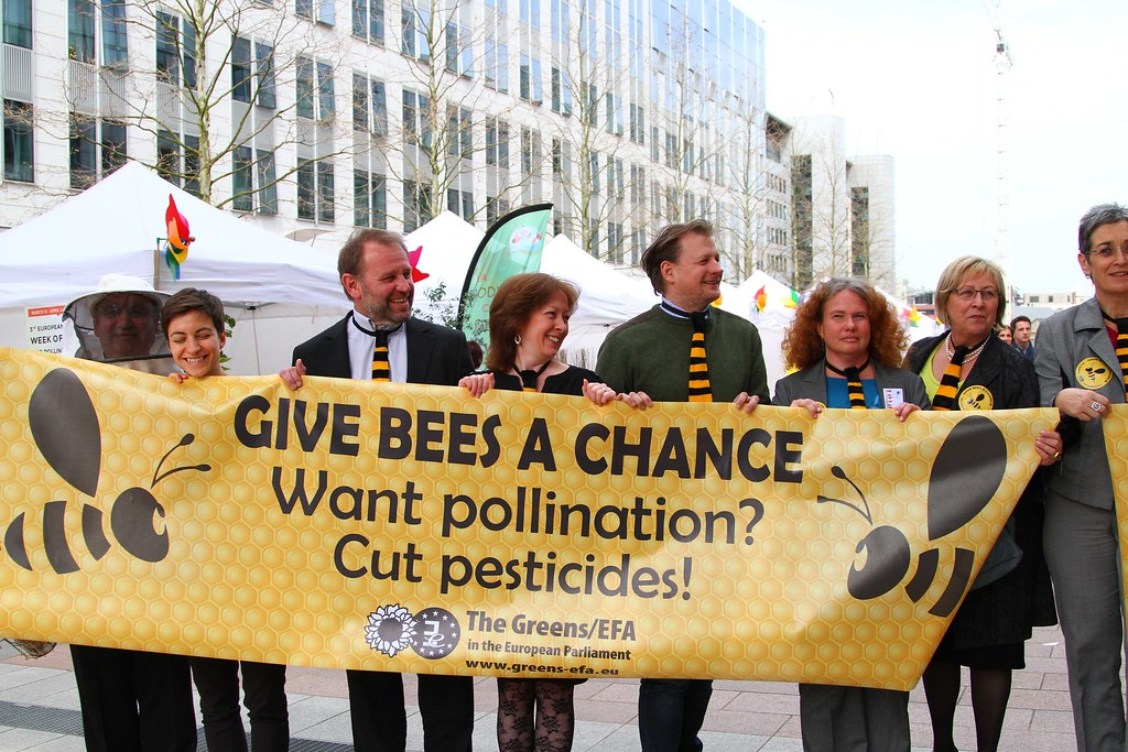 Image result for neonicotinoids