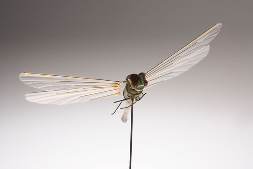 Dragonfly Insectothopter | by The Central Intelligence Agency