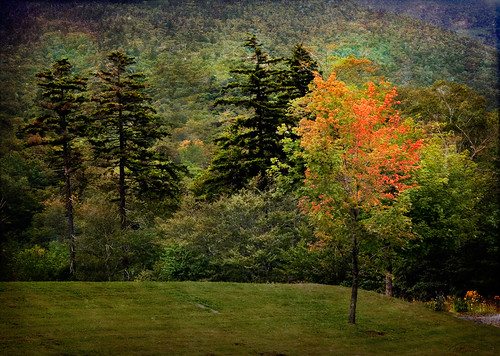 Autumn-in-Vermont | by Terry Pellmar