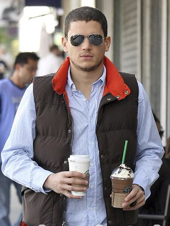 Wentworth Miller S Rb3025 This Photo Can Show How Miller