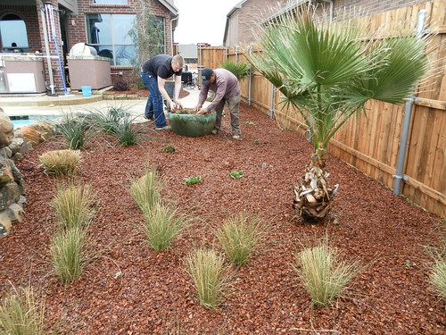 Garden design landscaping dallas strategic planting and for Garden design landscaping dallas tx