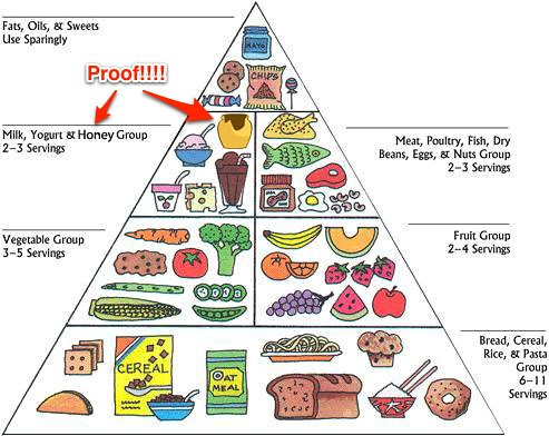 Dairy Free Food List For Toddlers