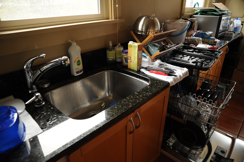 Usa Kitchen Sink Dish Drainer Microwave In Makeover Seattle Washington Usa