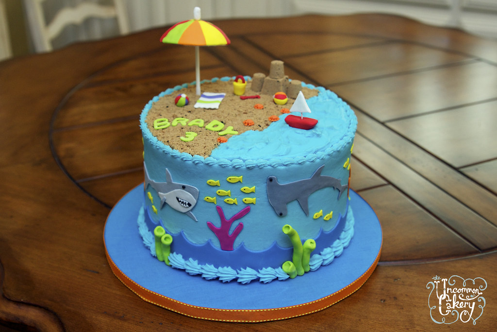 Beach Shark Themed Birthday Cake 8 Inch Chocolate Cake W Flickr