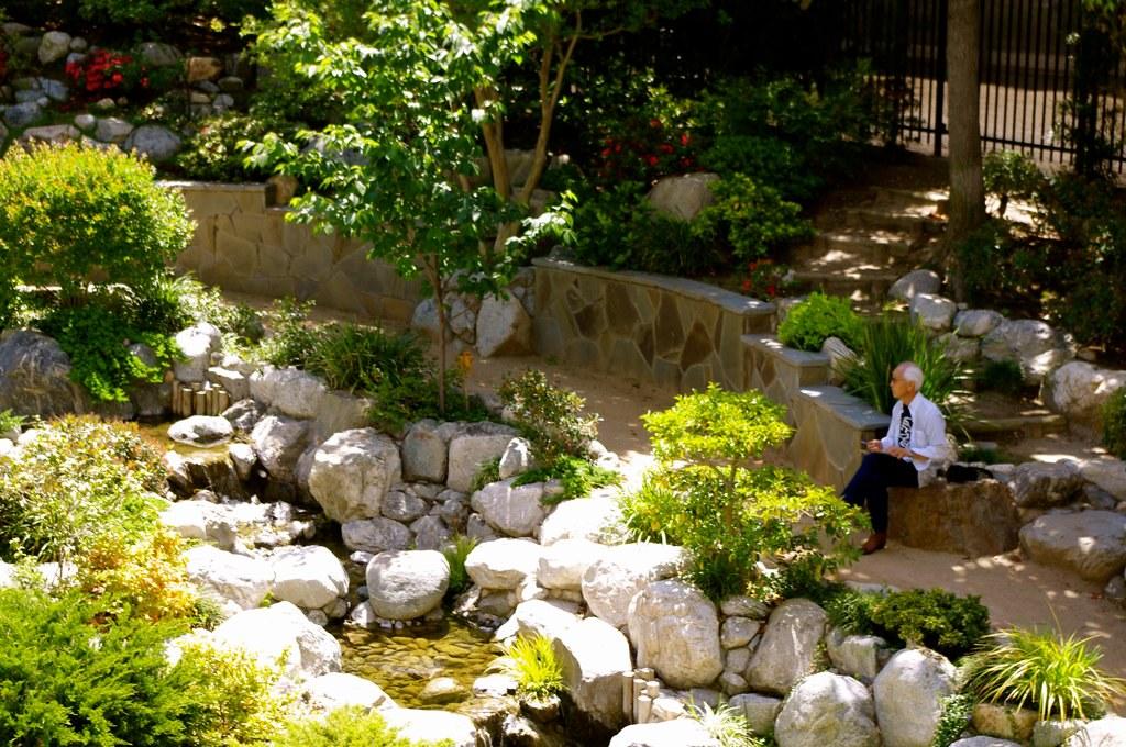 Mr Miyagi Backyard mr. miyagi #2 just chillin' in the zen garden. | an old man … | flickr