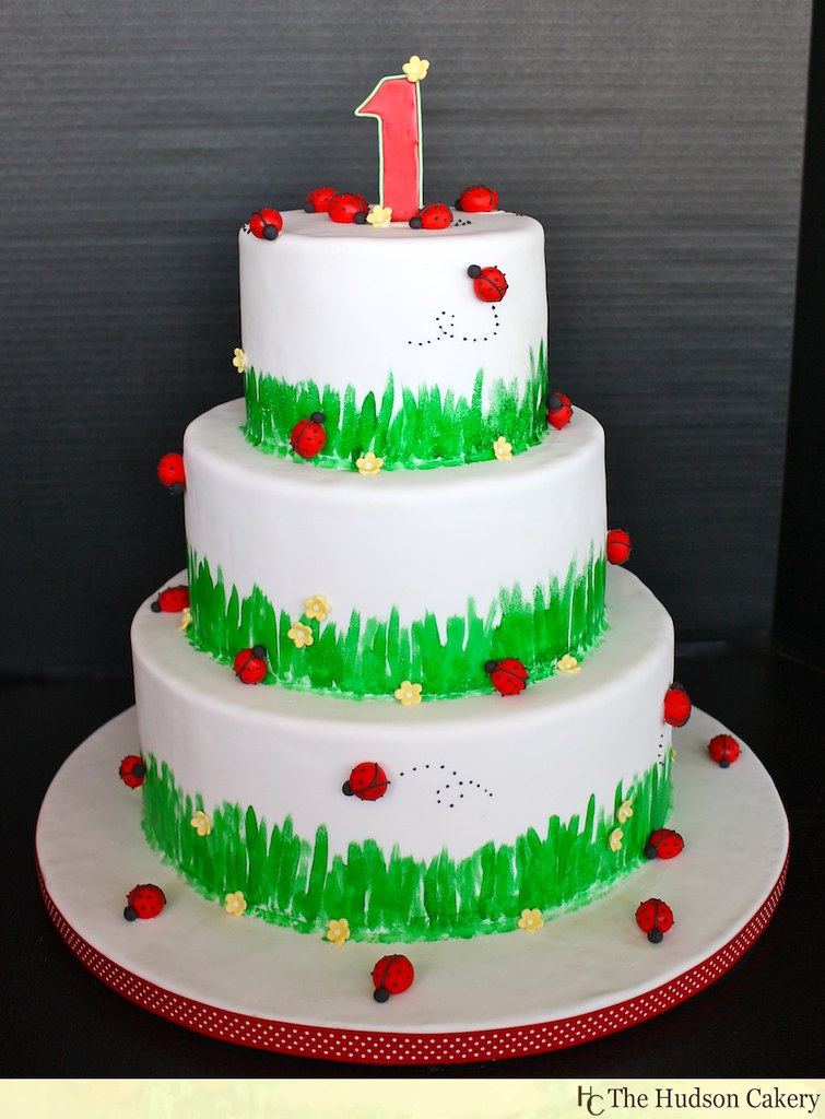 1st Ladybug Birthday Cake Sugar Ladybugs Circle This 1st B Flickr