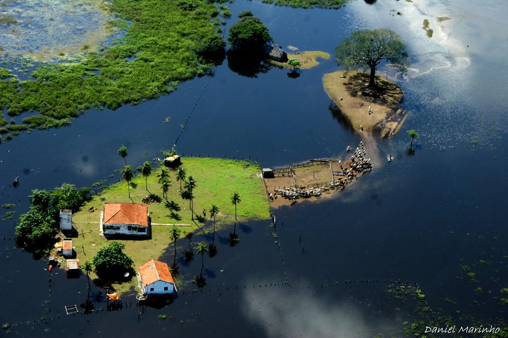 Resultado de imagem para Faz São Bento no Pantanal do Abobral