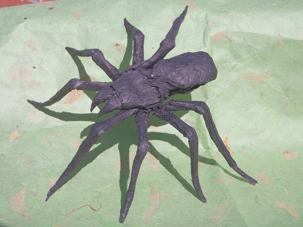 Origami Spider Designed And Folded By Robert Salazar Tissu Flickr