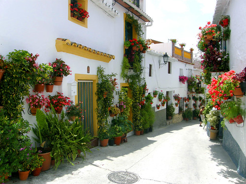 Floral Streets of Canillas de Aceituno | by fembat