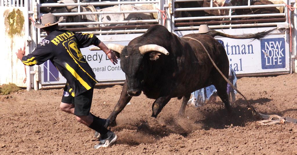 Mean Bull Mascot Fighting Stock Vector - Image: 44055337