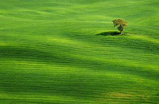 Solitude II | by Philipp Klinger Photography