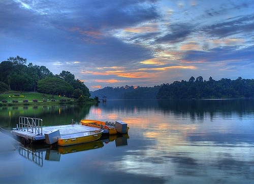 Macritchie Reservoir, Singapore | by gphotographyasiapacific