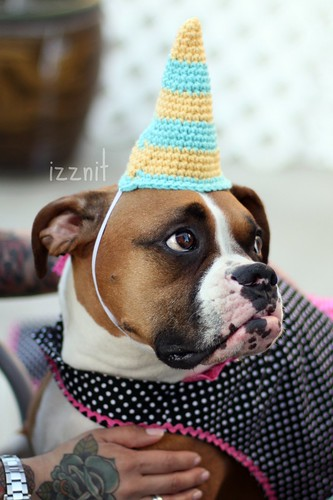 Maggie's Party hat | by Izznit