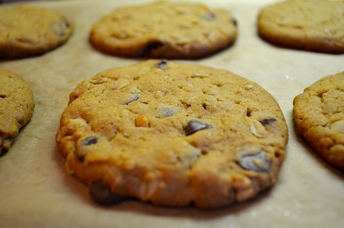 Peanut Butter Chocolate Chip Oatmeal Cherry Cookies with Sea Salt | by ...