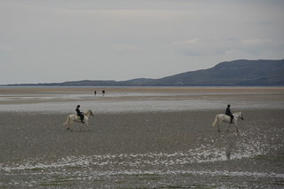 Riding out on Dunfanaghy Beach at low tide. | by Liam Cheasty