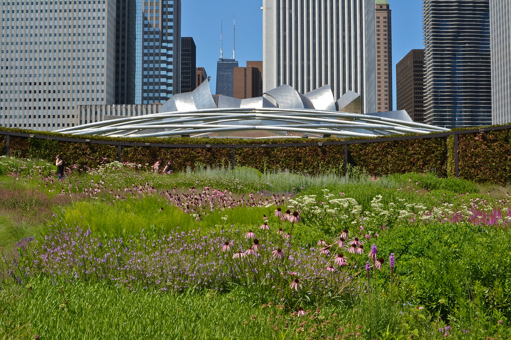 ... Lurie Garden At Millennium Park U2013 Chicago | By Center For Neighborhood  Technology