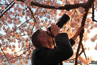 Photographer3.CherryBlossoms.TidalBasin.SW.WDC.9April2014 | by Elvert Barnes