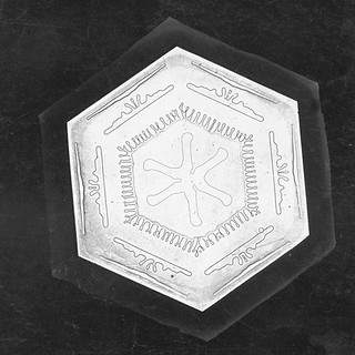 Snowflake Study | by Smithsonian Institution