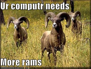 computer-needs-more-rams-field | by MrDeceth
