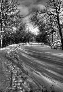 A Winter's Path | by KvonK